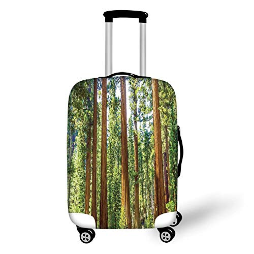 Travel Luggage Cover Suitcase Protector,National Parks Home Decor,Up View of Tree Branches Spring Conifers Sequoia Art Prints,Green Brown,for TravelM 23.6x31.8Inch