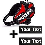 Canicaprice Harnais Julius K9 Power IDC Rouge + 2 étiquettes à Personnaliser (Mini-Mini (Poitrail : 40-53cm))
