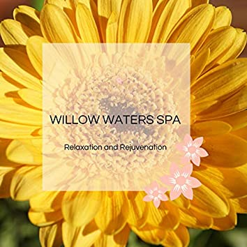 Willow Waters Spa - Relaxation And Rejuvenation