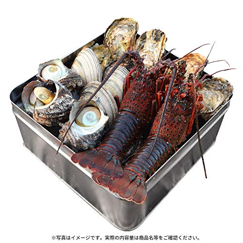 美し国 豪華 冷凍 海鮮 海宝焼 伊勢海老中2尾 鳥羽産 牡蠣 8個 さざえ 2個 大あさり 2個 ( 牡蠣ナイフ、片手用軍手付 ) 冷凍 海鮮 セット カンカン焼き ミニ缶入り 海鮮 バーベキュー セット BBQ