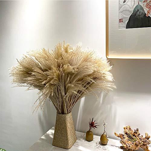 YC#039s CHOICE 100 pcs Faux Dried Pampas Grass DecorRaw Color20quot Tall Plants for Wedding Bouquets Arrangements or Boho Home DecorationRustic Living Room Decor