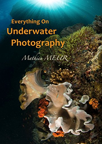 Everything On Underwater Photography: All You Need To Know On The Art And Techniques Of Underwater Photography