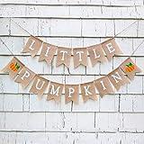 CHRORINE Fall Little Pumpkin Baby Shower Banner Decorations Fall Little Pumpkin 1st Birthday Party Decorations