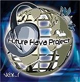 Future Flava Project