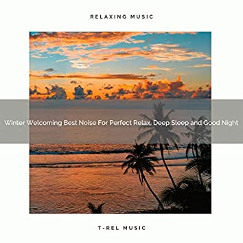 Winter Welcoming Best Noise For Perfect Relax, Deep Sleep and Good Night