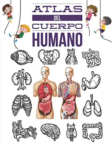 Atlas Del Cuerpo Humano: Cuerpo humano anatomia, Descubre el cuerpo humano, Enciclopedia  para niños.