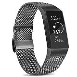 Amzpas Cinturino Compatibile con Fitbit Charge 3/Fitbit Charge 4, Cinturino Regolabile in Acciaio Inox con Chiusura Magnetica Unica per Fitbit Charge 3/Charge 4 (# Grigio, S)