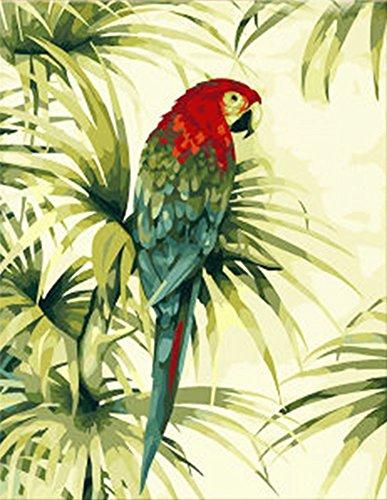 wowdecor Malen nach Zahlen Kits für Erwachsene Kinder, DIY Leinwandbild Nummer Malen–Papagei auf Ast 40x 50cm–New Prägung, Frameless