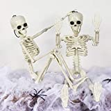 Pawliss 2 Pcs Halloween Skeleton Full Body Movable Joint, Halloween Party Props for Table Mantel Home - Spider Web, 2 Little Spiders