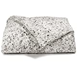 Calvin Klein Home 1710030-QN-I1-D1 Nocturnal Blossoms Comforter, Queen...