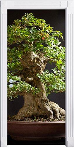 Stil.Zeit Möbel Albero Bonsai Piccolo Come Sfondo Porta, Formato: 200x90cm, Telaio della Porta, Adesivi Porta, Porta Decorazione, autoadesivi del Portello