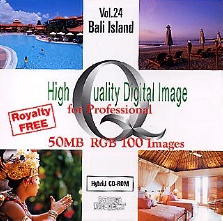 対立硬化するブッシュHigh Quality Digital Image for Professional Vol.24 Bali Island