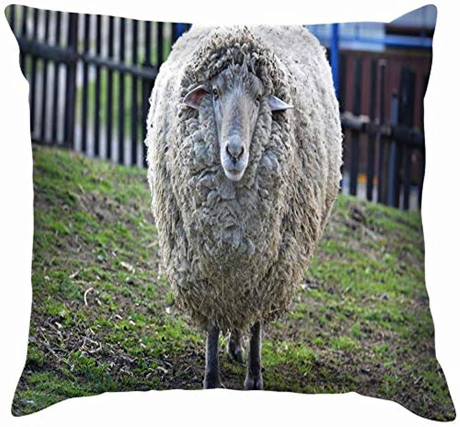 新しさ弱まる傀儡ポートレートビッグシープ動物野生動物愛らしいスロー枕カバーホームソファクッションカバー枕ギフト45x45 cm