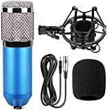Urban Infotech Professional Studio Microphone with Shock Mount Stand Broadcasting & Recording Microphone