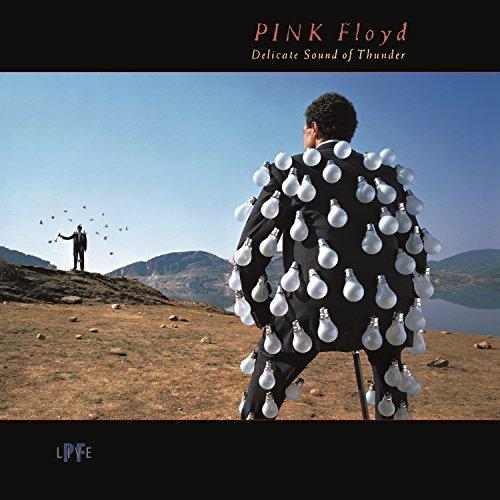 Delicate Sound of Thunder (Live) -  Pink Floyd, Vinyl