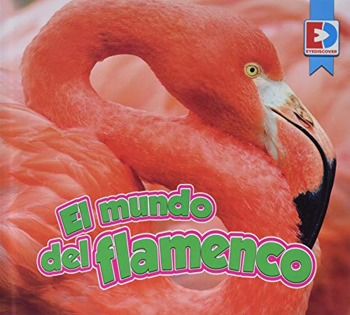 El Mundo del Flamenco (EyeDiscover)