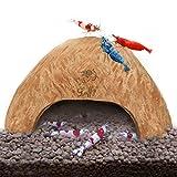 SunGrow Coco Shrimp Cave, 5 Pulgadas De Ancho Por 3 Pulgadas De Alto, Coco Hut, Cómodo Escondite Para Crustáceos, ÁRea De Reproducción Perfecta, Promueve La Muda Y La Cría, Decoración Del Acuario