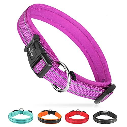 MASBRILL Collar de Perro Duradero y Reflectante, Ajustable Collar para Perros Grandes o Pequeños, Fabricado de Nylon con Suave Acolchado (Morado S)