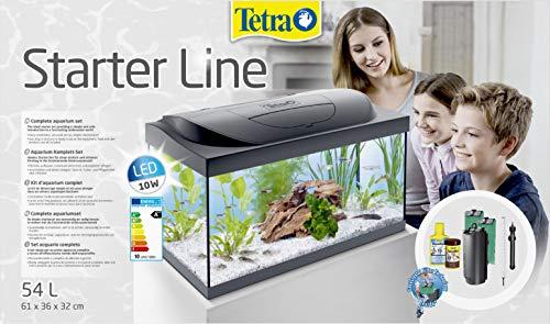 Tetra 4004218256996