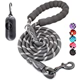 BAAPET 4/5/6 FT Strong Dog Leash with Comfortable Padded Handle and Highly Reflective Threads for Small Medium and Large Dogs (4FT-1/2'', Black)