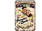 sfasf Letreros de metal con diseño de The Prisoner of Zenda (1937), diseño vintage de películas de metal, decoración moderna de pared para exteriores, hombre, cocina, jardín, 20 x 30 cm