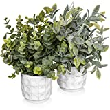 Artificial Potted Plants Set of 2 - Fake Plants for Desk - Bathroom Plants Decoration - Farmhouse Plant Decor - Small Faux Plants for Shelves - Small Artificial Plants for Home Decor Indoor