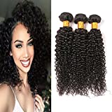 Brazilian Afro Kinkys Curly Hair Bundles Wet And Wavy Sew In Human Hair Weave Thick Curly Hair Bundles Wholesale Lots Unprocessed Virgin Human Hair Extensions For Women Natural Black 14 16 18 Inch