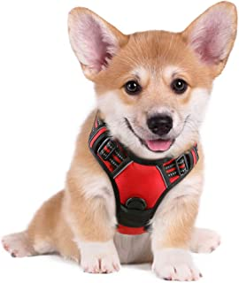 rabbitgoo Dog Harness No-Pull Pet Harness Adjustable Outdoor Pet Vest 3M Reflective Oxford Material Vest for Dogs Easy Con...