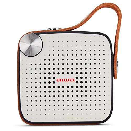 Aiwa BS-100BK Tragbarer Lautsprecher, Mehrfarbig