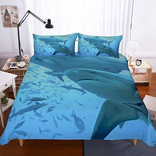 227 QI Duvet Cover Sets 3D Undersea Shark Printing 3 Piece Set Bedding 100% Microfiber Used For Home Decoration (1 Duvet Cover + 2 Pillowcases) A-King(259x229cm)