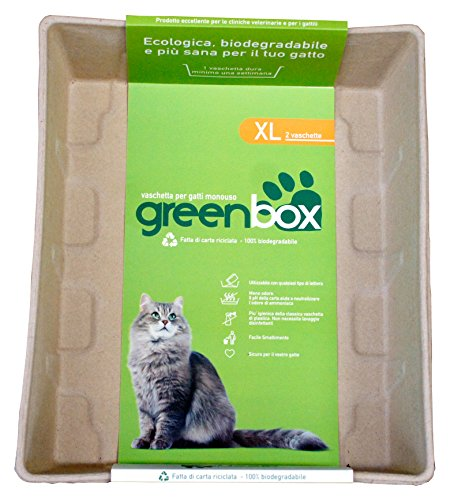 GREEN CAT greencat Greenbox Bandeja Gatos desechable