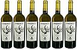 Chapirete prefiloxérico - vino blanco verdejo de cepas centenarias previas a la filoxera - Denominación de Origen Rueda - 6 botellas de 750 ml - Total 4500 ml