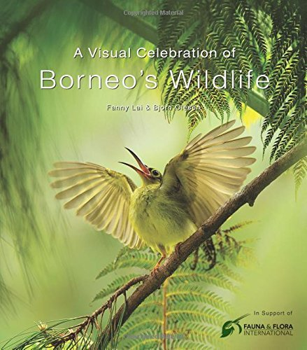 Visual Celebration of Borneo's Wildlife: [All Royalties Donated to Fauna & Flora International] (English Edition)