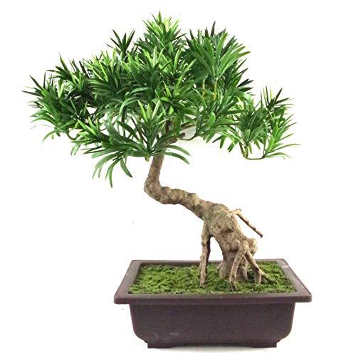 Leaf Hoja de árbol Pino Artificial 40 cm, Podocarpus Bonsái