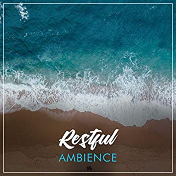 #Restful Ambience