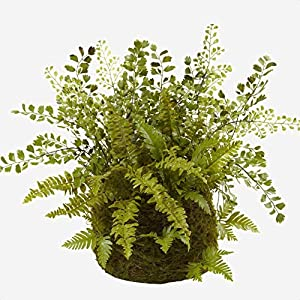 """Silk Flower Arrangements 8"""" Mixed Fern Plant in Basket, Weather Resistant: No, Supplier Intended and Approved Use: Non Residential Use; Residential Use; Unavailable"""