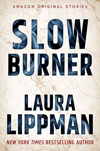 Slow Burner (Hush collection) (English Edition)