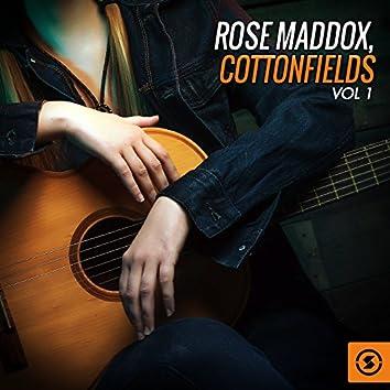 Cottonfields, Vol. 1