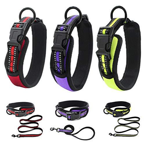 pengyu- Haustier-Hundehalsband mit reflektierendem Webband, mit Schnalle, Halsband und Leine, Rot, XS
