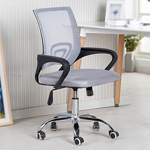 RASHION Mesh Office Chair with Adjustable Arms, Adjustable Office Desk Chair with Swivel and Wheels for Home Office (Grey)