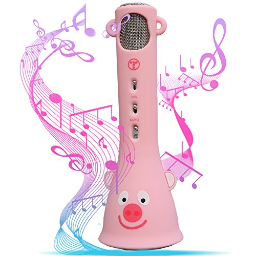Product Image of the Wireless Karaoke Microphone
