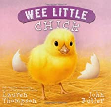 Wee Little Chick