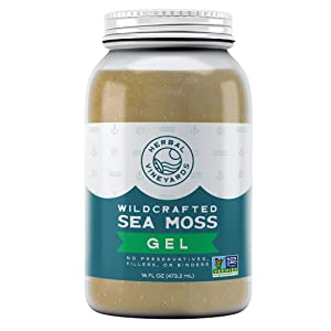 Organic Sea Moss Gel - Non-GMO Project Verified - 16 ounces - Wildcrafted Sea Moss - Herbal Vineyards