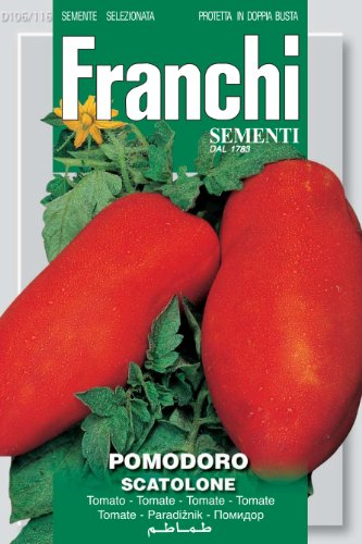 Seeds of Italy Ltd Franchi Tomate scatolone