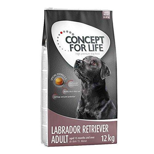Concept for Life Labrador Retriever Premium Trockenfutter für Erwachsene, 12 kg