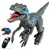 Remote Control Dinosaurs Toy for Boys Girls Age 3+, Smart Robot for Kids, Realistic Dinosaur Velociraptor Blue Toys, Electronic Walking Large Dinosaur| Glowing|Roar |Spray|-Birthday