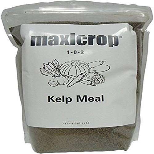 Maxicrop 5000 Kelp Meal, 5-Pounds