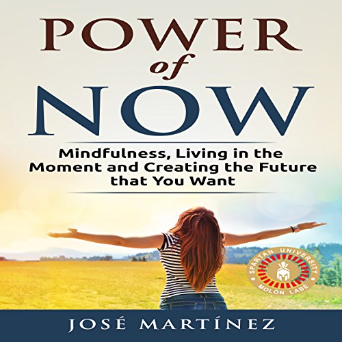 Power of Now audiobook cover art