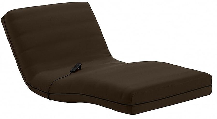 メモ混雑お風呂を持っているフランスベッド  RP(ルーパー)シリーズ専用カバー シングルサイズ ブラウン 039533133