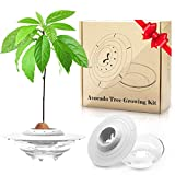 GORNORVA Avocado Tree Growing Kit, UFO Avocado Planting Germinator Bowl with Clear Plant Holder and Plant Instructions, Christmas Gift for Women Friends Family(Avocados & Plants NOT Included)